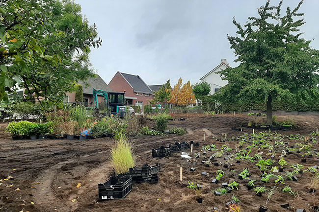 Dutch-Quality-Gardens-Hans-Linders-tuinaanleg